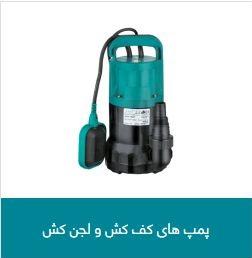 Leo shoe pump